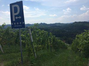 roux communicatie wijnkrachtpatsers